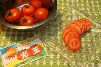 とれたて三箇牧トマト詰め合わせ
